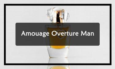 Amouage-Overture-Man