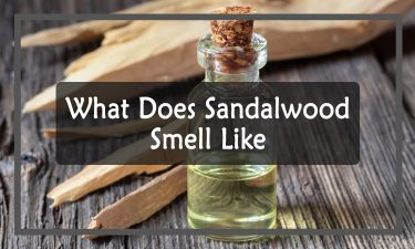What Does Sandalwood Smell Like