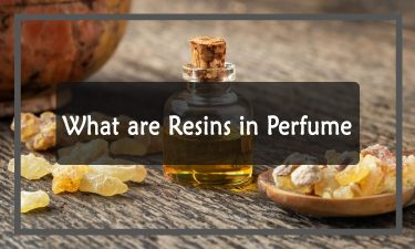What are Resins in Perfume